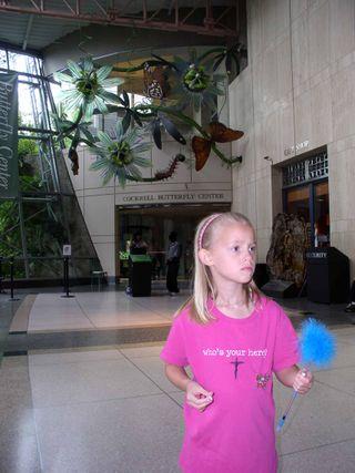 IDoNotLikeTheButterflies