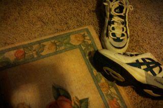 12Shadow,rug,shoesClassicToyNormalNeg