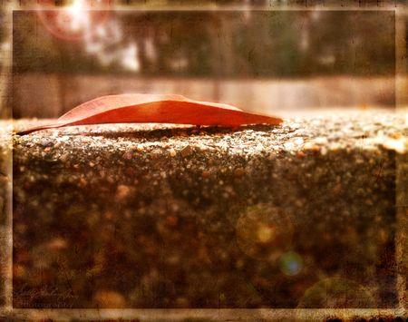 Leaf1kk